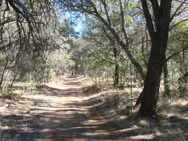 Pinery Canyon