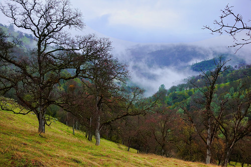 california landscape nejmantowicz johnkudlacz