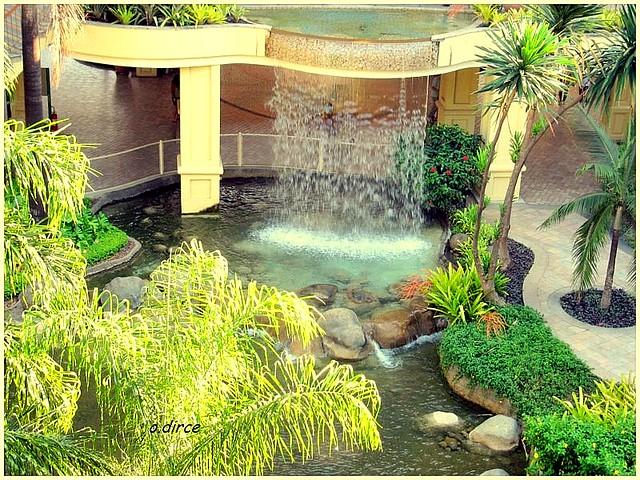 plantas jardins contemporaneos : plantas jardins contemporaneos ? Doitri.com