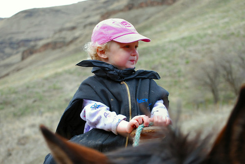 spring cattle drive '10 045_