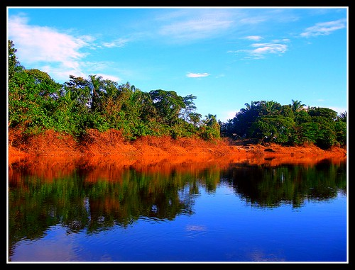 rio river selva bolivia beni jungla