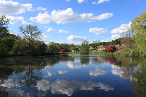 blue sky lake green nature water wisconsin clouds reflections spring day blossoms reflexions whitnalpark mywinners pwpartlycloudy