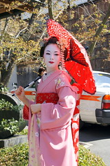geisha, flower, clothing, temple, woman, female, lady, costume, person, dress,