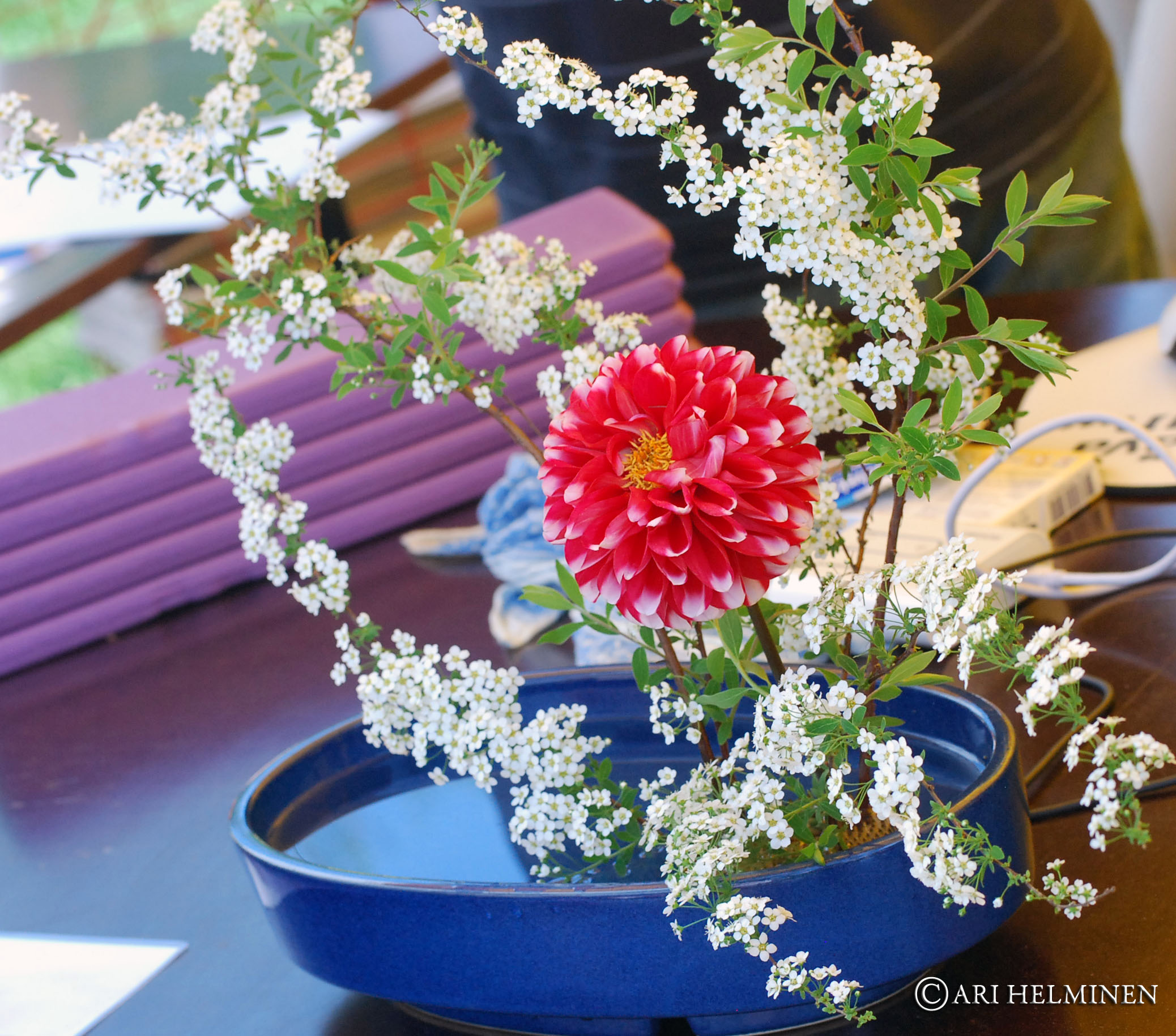 Ikebana 生け花 Japanese art of flower arrangement