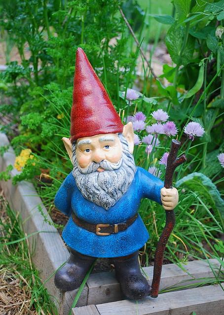 Garden Gnome Flickr Photo Sharing