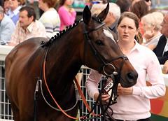 Cartmel Races (May 2010)