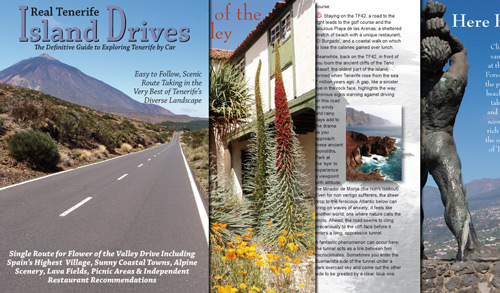 Real Tenerife Island Drives