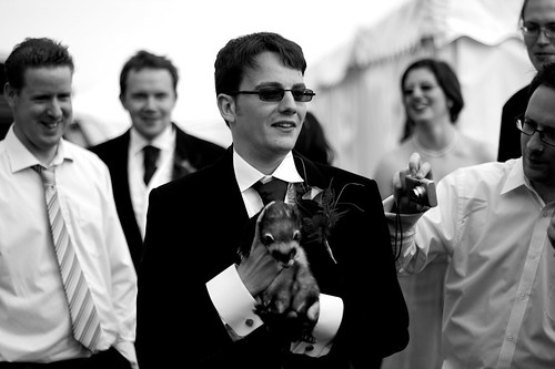 The Groom and a Ferret