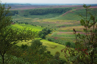 20090827-01_Hole of Horcum