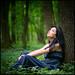 In the forest by Bogdan Suditu
