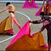 Baile de capotes