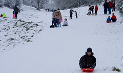 Tobogganing on Doverow Hill