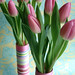 Ribbon Vases with Tulips