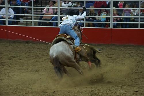 san antonio rodeo