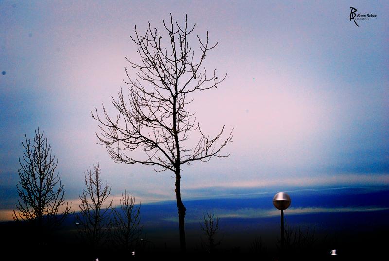 Atardecer mañanero by Belen Roldan