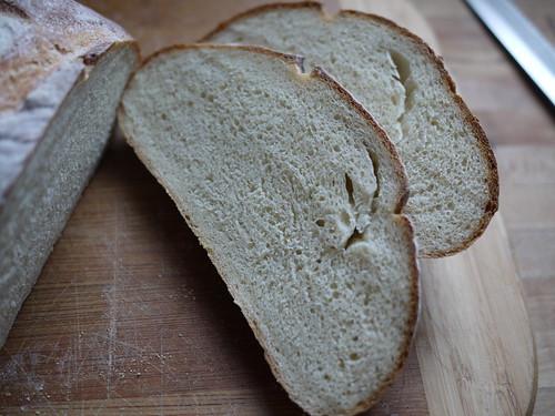 Tuscan Bread - Crumb