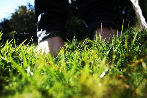 light macro green feet grass sunshine spring focus bokeh sunny greenery springtime grassy