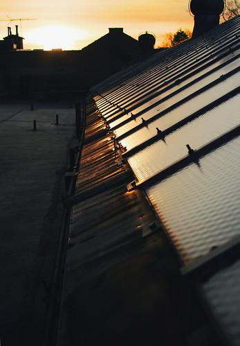 roof light orange rooftop sunrise allison farrand