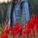 456 ~ at the poppy field (2) by Teresa Teixeira