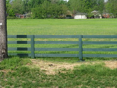 home fencing, land lot, field, grass, picket fence, split rail fence, property, yard, meadow, lawn, pasture, rural area,