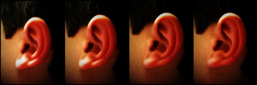 listen up: ears really are strange looking if you think about it