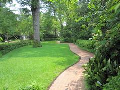 Elsong Gardens 2