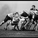 Peterborough Rugby Union Football Club v Hinckley by John D. Grant