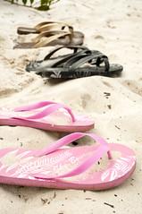 outdoor shoe(0.0), purple(0.0), shoe(0.0), sandal(0.0), leg(0.0), petal(0.0), magenta(1.0), footwear(1.0), flip-flops(1.0), pink(1.0),