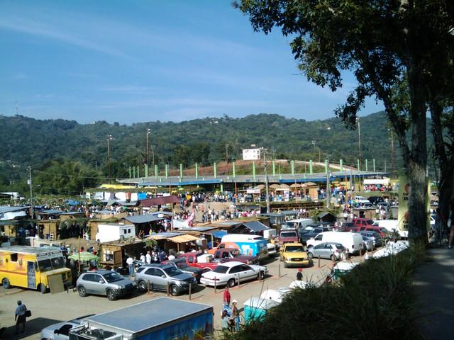 Maricao Coffee Festival