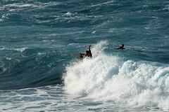 Hookipa Beach Surfing
