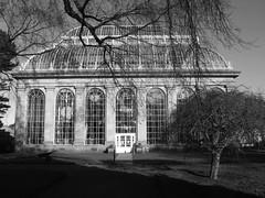 Royal Botanic Gardens, Edinburgh
