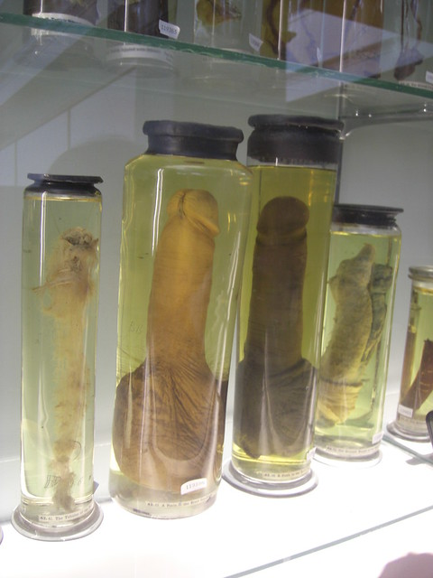 Hentai keandra tube