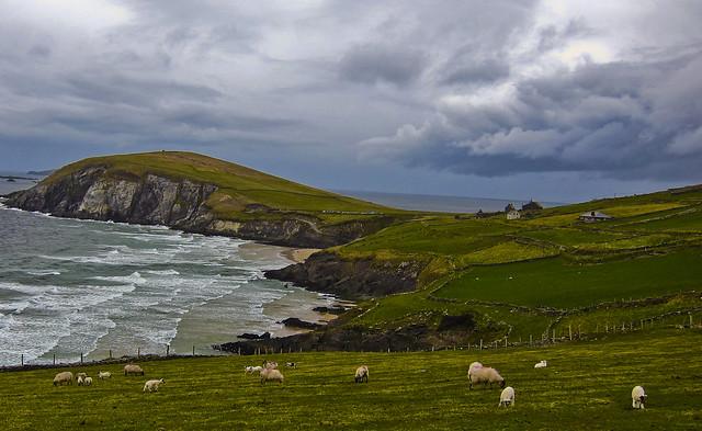 dingle peninsula ireland: