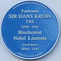 Photo of Hans Krebs blue plaque
