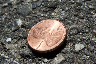 Shiny Penny 2001 D Macro April 30, 20101
