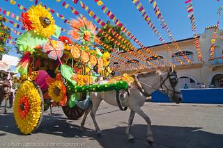 Vigan Calesa Parade 2010 (5 photos)