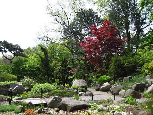 The Rock Garden of BBG. Photo by Rebecca bullene.