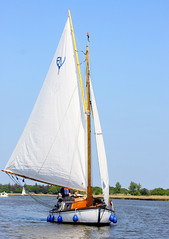 sail, sailboat, schooner, sailing, sailboat racing, vehicle, sailing, ship, sports, sea, skiff, windsports, mast, watercraft, scow, dinghy sailing, boat,