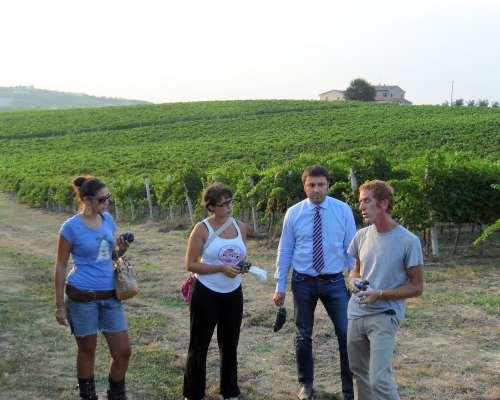 Crea il tuo vino 2010 proposto dalla cantine spalletti for Crea il tuo progetto di casa