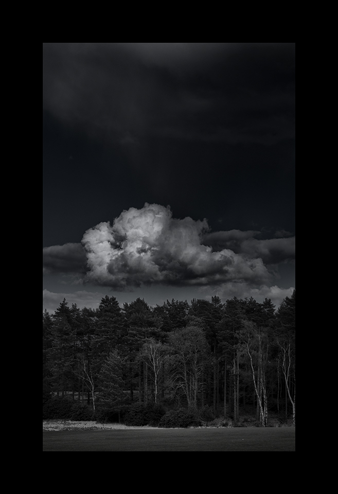 Cloudscapes: Cumulus above Trees by Nicholas M Vivian