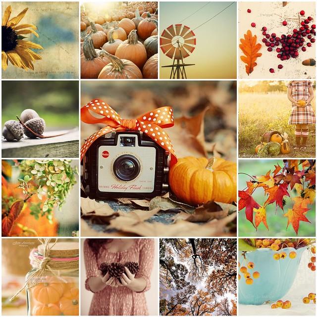 TILT -- autumn love