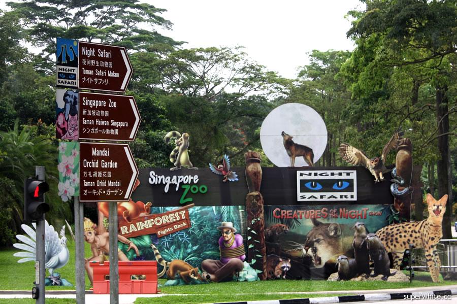 singapore trip day 1 zoo and night safari superwhite. Black Bedroom Furniture Sets. Home Design Ideas