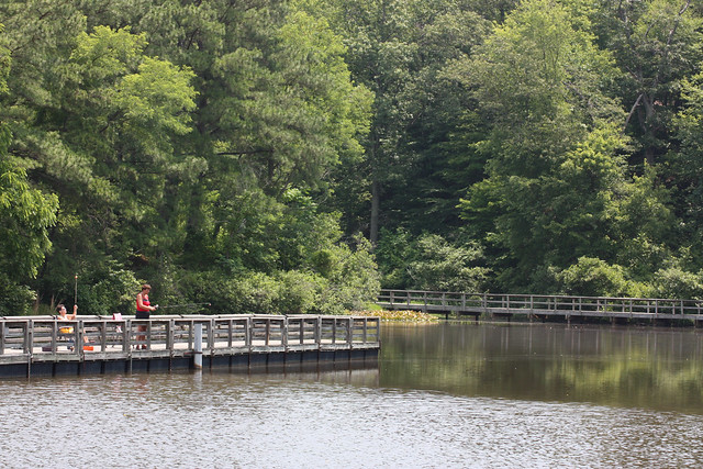 The Green Hill pond area at James River State Park provides accessible fishing and a meandering walk along the pond