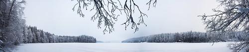 trees winter panorama lake snow tree ice nature forest finland landscape geotagged naturephotography saari mäntsälä haukankierros hunttijärvi