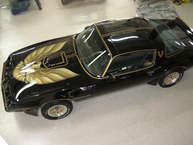 79 Trans AM Special Edition