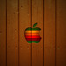 iPad_Wallpaper_Wooden_Style_by_ulrikstoch