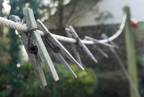 green beach virginia focus bokeh rope clothesline clothespin