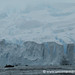 Zodiac Against the Ice - Antarctica