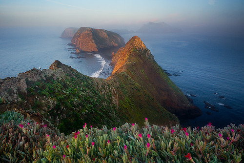 Channel Islands National Park - Anacapa Island