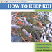 How to Keep Koi PDF ScreenShot